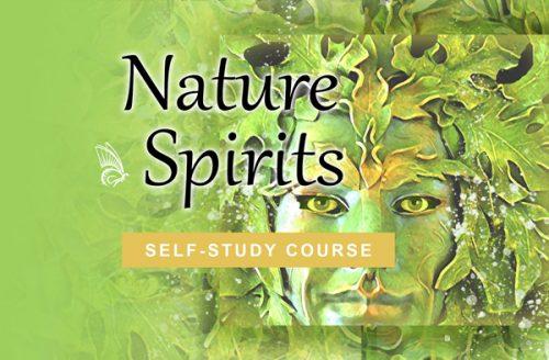 Nature's Spirits self-study