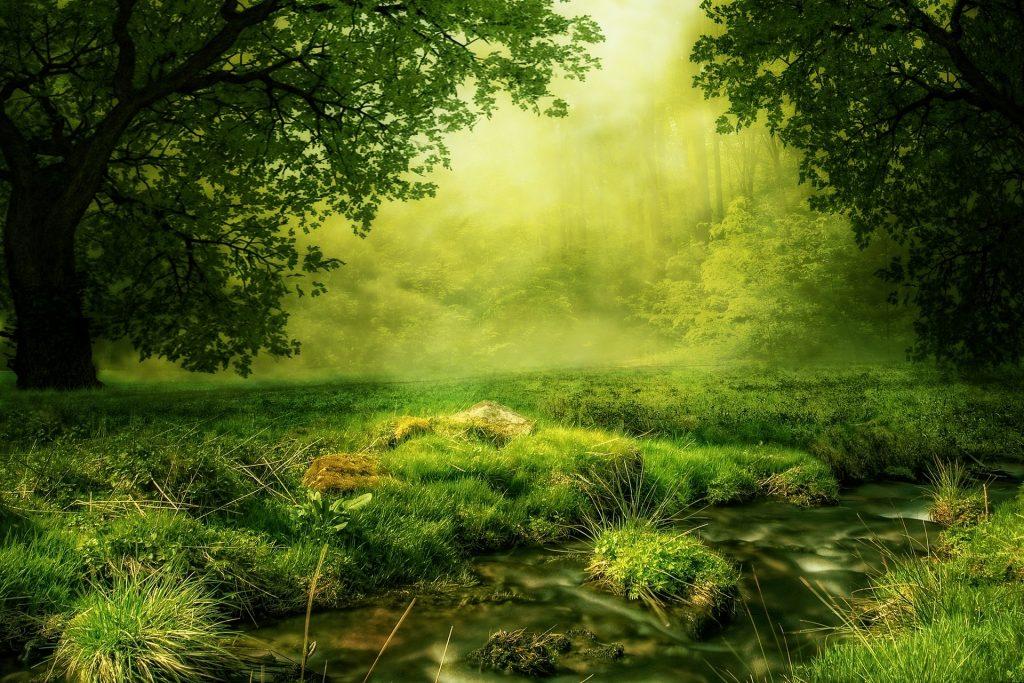 Nature spirits self-study
